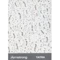 Подвесной потолок армстронг TATRA Board (ТАТРА Борд) 1200x600x15 BP 952 M3 B